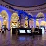 اسکلت دایناسور در سال 2008 در معدن دانا در وایومینگ ایالات متحده (Dana Quarry in Wyoming, USA) کشف شد و امروزه روی این صحنه نمایش در بازار دبی یا دبی مال (Dubai Mall) است